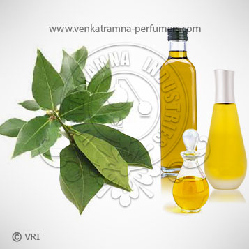 Bay Leaf (Cinnamomum tamala) Pure Essential Oil