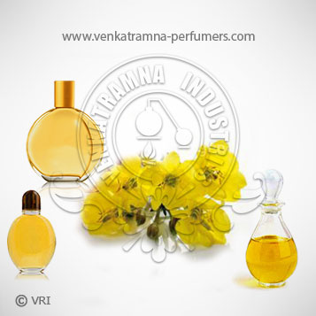 Evening Primrose (Oenothera Biennis) Pure Carrier Oil